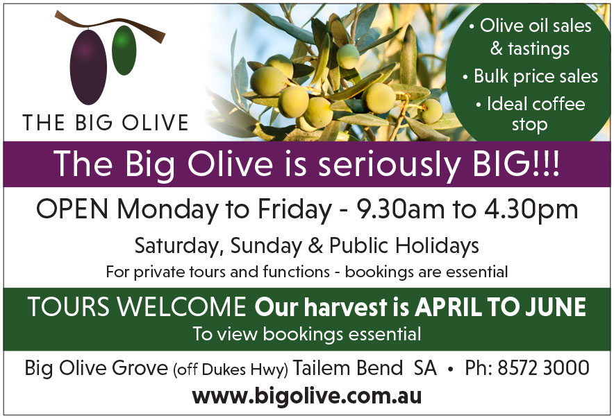 The Big Olive Tailem Bend